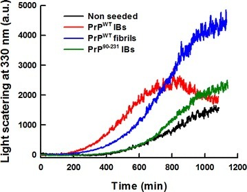 Aggregation kinetics of PrPWT. The aggregation reactions of 0.5 mg/mL of purified and refolded rPrPWT were carried out under constant agitation at 600 RPM and 37 °C. In vitro preformed fibrils (2 %) or PrPs IBs (final OD350 = 0.1) were used for seeding and cross-seeding assays. PrP fibrilization (black line) as a function of time, exhibits a typical nucleation-elongation profile. The lag phase is reduced in the presence of pre-aggregated homologous protein, either PrPWT fibrils (blue line) or PrPWT IBs (red line). Cross-seeding with PrP90–231 IBs (green line) did not affect the fibrilization extent and kinetics