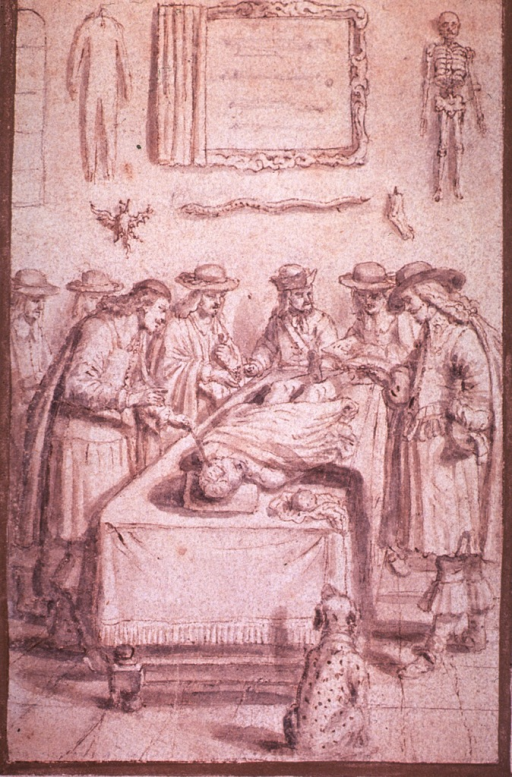 <p>Interior view: several men are gathered around a table on which is a cadaver in the process of being dissected; a dog sits on the floor at the fore end of the table.</p>