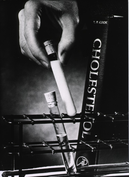 <p>A hand is placing a test tube in a rack next to another test tube; the plasma in one is clear, the other is milky white. A book titled &quot;Cholesterol&quot; is leaning against the rack.</p>