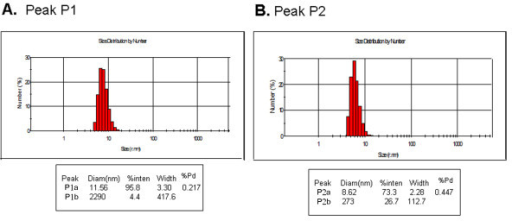 Dynamic light scattering analysis of the LLER protein. The polydispersity (%Pd) and size (mean and mode, in nm) of the purified LLER protein were estimated by dynamic light scattering. A 12-μl sample of a 500 μg/ml solution of the LLER protein in peak 1 (A) and peak 2 (B) were analyzed by a temperature-controlled Zetasizer Nano-S dynamic light-scattering instrument at 20°C.