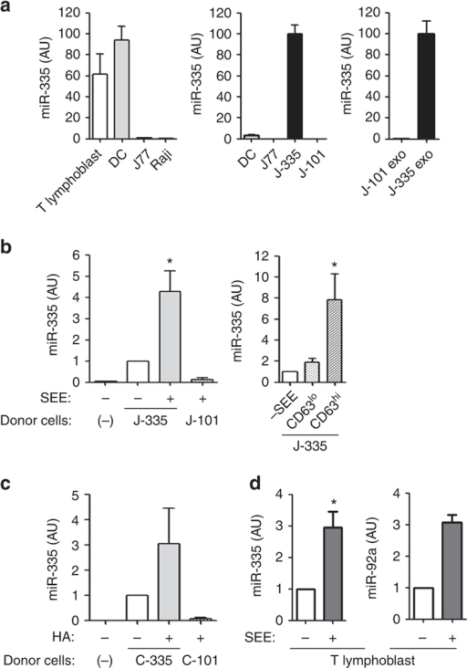 Exosomal miRNA-335 is transferred from T cell to APC in an Ag-specific manner.(a) Levels of miR-335 were assessed by quantitative reverse transcription PCR (qRT–PCR) in primary dendritic cells and T lymphoblasts, and in Raji and J77 cells. J77-CD63-GFP cells were stably transduced with miR-335 (J-335 cells) or miR-101 (J-101 cells), and miR-335 levels were determined by qRT–PCR in cells and derived exosomes. Data are representative of three experiments (mean and s.e.m.) (b) miR-335 levels in SEE-primed Raji cells sorted 24 h after conjugation with J-335 cells. J-101 were used as control donor cells. Left panel, Data are representative of seven independent experiments (mean and s.e.m), P=0.014 (one-sample t-test). Right panel, n=5 independent experiments; P=0.04 (one-sample t-test); error bars represent s.e.m. (c) miR-335 levels in HA-primed HOM-2 cells sorted 24 h after conjugation with CH7C17 cells overexpressing miR-335 (C-335). CH7C17 cells overexpressing miR-101 (C-101) were used as control donor cells. Data are representative of five experiments (mean and s.e.m.). (d) miR-335 and miR-92a levels in SEE-primed Raji cells sorted 24 h after conjugation with primary T lymphoblasts-expressing miR-335 and miR-92a endogenously. Data are representative of three experiments (mean and s.e.m.), *P=0.026 (one-sample t-test) AU, arbitrary units.