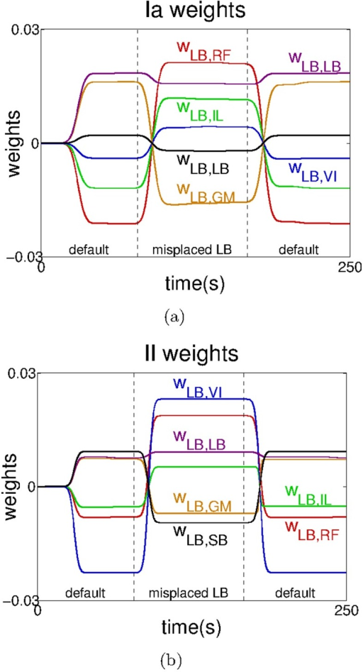 Changes in the reflex weights of the  motor element () when passing from the default system to the system with the misplaced  and back to the default system.Connections involving a) the Ia-type and b) the II-type afferents. For clarity, the data has been smoothed using a moving average filter with a window of