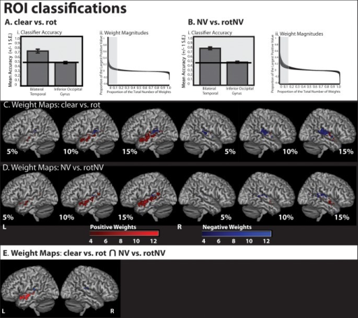 Classifier accuracy and weight maps from classifications using the entirety of the bilateral temporal cortex (including PAC) and the inferior occipital gyrus (used as a control region). (Ai) Classifier accuracy (proportion correct) for (clear vs. rot). (Aii) Weight magnitude values of weights from (clear vs. rot). (Bi) Classifier accuracy (proportion correct) for (NV vs. rotNV). (Bii) Weight magnitude values of weights from (NV vs. rotNV). (C) The most discriminative 5%, 10%, and 15% of classifier weights from a classifier trained to discriminate (clear vs. rot). Color gradient indicates the degree of concordance across subjects. (D) The most discriminative 5%, 10%, and 15% of classifier weights from a classifier trained to discriminate (NV vs. rotNV). Color gradient indicates the degree of concordance across subjects. (E) Weights featuring in the top 15% of weight values common to both (clear vs. rot) and (NV vs. rotNV) and more than 4 subjects.