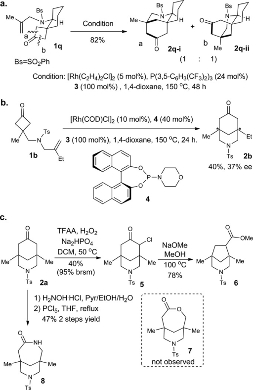 Potentials and applications in bridged-ring synthesisa, Construction of fused-bridged tricyclic structures. b, Potentials for developing an enantioselective transformation. c, Use of the carbonyl group in the product as a handle to access ring-contracted and expanded bridged rings.