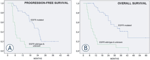 Progression-free and overall survival of treated patients (n = 53).Progression-free survival for epidermal growth-factor receptor (EGFR) wild-type patients (median 6.0 months, 95% confidence interval [CI] 3.9 – 8.1) and for patients with EGFR activating mutations (median 21.2 months, 95% CI 15.3 – 27.1)Overall survival for EGFR wild-type patients (median 7.6 months, 95% CI 5.0 – 10.2) and for patients with EGFR activating mutations (median 32.5 months, 95% CI 21.2 – 43.7)