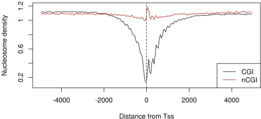 Nucleosome density distribution is different between CGI-TSSs and nCGI-TSSs.The BNP values are plotted together for CGI-TSSs (black line) and nCGI-TSSs (red line). On the x-axis is the position of the bin relative to the TSS.