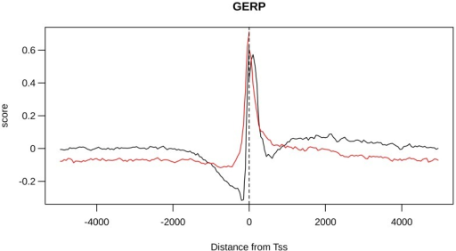 GERP distribution is different between CGI-TSSs and nCGI-TSSs.The BGS values are plotted together for CGI-TSSs (black line) and nCGI-TSSs (red line). On the x-axis is the position of the bin relative to the TSS.
