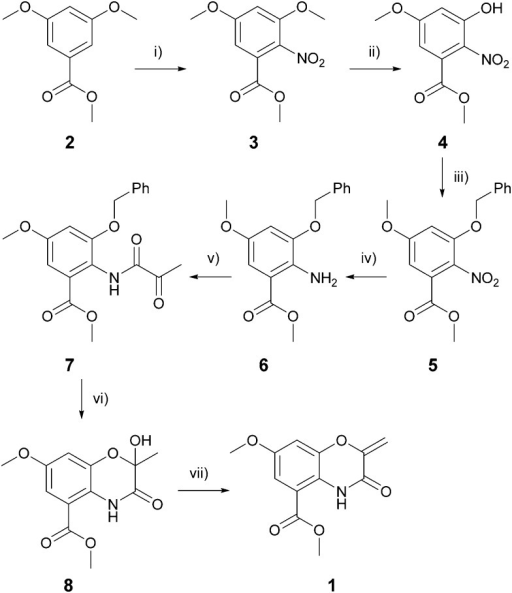 The total synthesis of the benzo[1,4]oxazine biofilm inhibitor 1. Reagents and conditions: (i) HNO3, Ac2O, 0 °C to rt, 1 hour, 94% yield; (ii) 4 eq. AlCl3, DCM, 0 °C to reflux, 3 hours, 89% yield; (iii) 4 eq. BnBr, 4 eq. K2CO3, 1 : 1 DCM/MeOH, reflux, 3 hours, 97% yield; (iv) 4 eq. SnCl2, 3 : 1 EtOH/6N HCl, rt to reflux, 45 minutes, 81% yield; (v) 1.1 eq. pyruvoyl chloride, 1.5 eq. pyridine, DCM, 0 °C to rt, 90 minutes, 65% yield; (vi) 2% Pd(OH)2/C, 4 eq. 1,4-cyclohexadiene, EtOH, 50 °C, 2 minutes, 81% yield; (vii) 1.2 eq. MsCl, 1.5 eq. NEt3, DCM, 0 °C to rt, 90 minutes, 82% yield.
