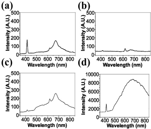 Two-photon fluorescence spectra of (a) melanoma cells, (b) medium before culture, (c) medium after culture, and (d) pure melanin.The narrow peaks around 417 nm and 625 nm are the THG of the glass-solution interfaces and the SHG of aggregated materials on glass, respectively.