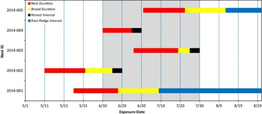 Example showing how nest and brood monitoring data and a user‐defined nest interval (21 days), brood interval (21 days), renest interval (5 days), and postfledge interval were used to estimate breeding pairs. In this example, the postfledge interval extends from the time a brood fledged to the end of breeding season (EOBS) as the species in this hypothetical example did not renest after fledging a brood (blue bars extending to the right side of the renest interval). The gray shaded area indicates when the maximum numbers of breeding pairs (three) occurred. The vertical dashed blue lines represent a hypothetical sampling interval that occurred every 10 days. The breeding population estimator (BPE) assumes sampling occurs at sufficient regularity that the maximum number of breeding pairs can reliability be estimated.