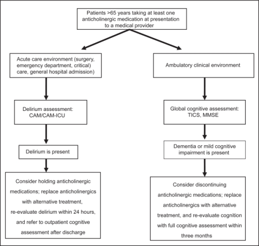 Proposed algorithm for the clinical approach to older adults prescribed anticholinergic medications.Abbreviations: CAM, Confusion Assessment Method; TICS, telephone interview for cognitive status; MMSE, Mini-Mental Status Exam.