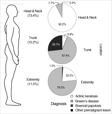 The proportion of the premalignant skin lesions according to body location.