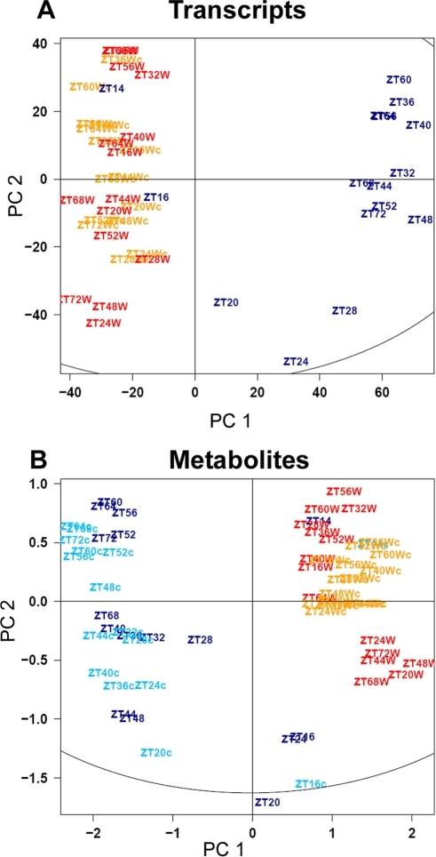 Contribution of low temperature and diurnal regulation to the variation in transcripts and metabolites in diurnal and circadian time courses.PCA (Principal Component Analysis) was applied to transcript (A) and metabolite (B) profiling datasets from diurnal and circadian time courses. The color indicates the different light and temperature conditions of the studied time courses: light/dark cycles either at 20°C (red) or 4°C (dark blue) and continuous light at 20°C (orange) or 4°C (light blue). Circadian time courses are denoted by c in lowercase. Sampling time is indicated by ZT (zeitgeber, in hours). PC1 and PC2 correspond to principal component 1 and 2, respectively. Each point in (A) represents a single transcript profile, whilst in (B) it represents the mean metabolite profile of five biological replicates.