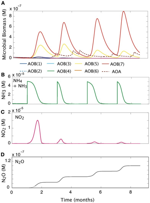 Community response to pulsed substrate input. (A) Changes in AOO biomass over time. (B) Substrate concentration (M). (C) Nitrite dynamics over time. (D) Production of N2O over time.