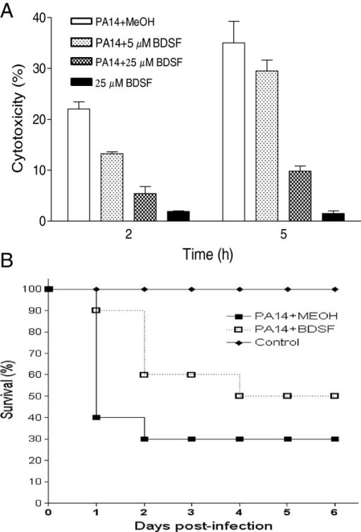BDSF attenuates the virulence of P. aeruginosa PA14 in both in vitro and in vivo model. Cytotoxicity was assayed by monitoring LDH released by the HeLa cells infected with a MOI of about 50. Experiments were performed with DMEM medium supplemented with BDSF. The data are the means of three repeats and error bars indicate the standard deviations (A). Zebra-fish model was assayed by testing the survival rate of the fish after infection with P. aeruginosa PA14, without (■) and with (□) treatment of BDSF. PBS containing relevant BDSF was injected in the same way as for a mock control (♦). The experiment was repeated three times, and a representative set of data is shown (B).