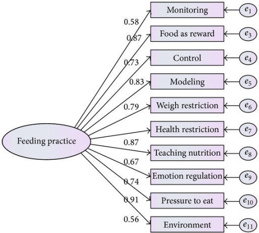 Modified measurement model for parental feeding practice.