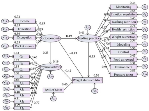 Comprehensive structural model with regression weight and covariance coefficients.
