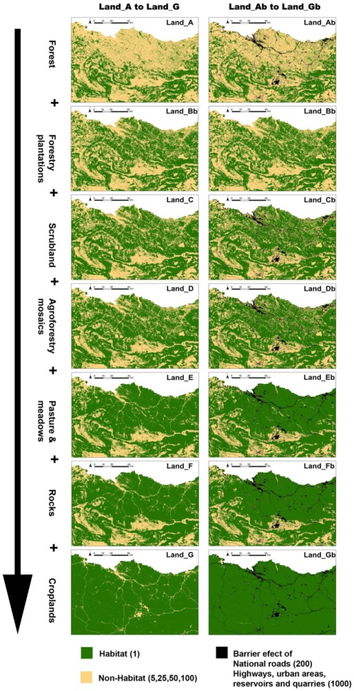 "Binary landscape resistance maps on a gradient from greater to lesser preference of the focal species in relation to forest environment.Binary landscape resistance maps, on a gradient from greater to lesser preference of the focal species in relation to forest environment (Land_A to Land_G). Green-coloured cells represent ""Habitat"" (resistance value 1) and yellow-coloured cells ""Non-Habitat"" (resistance values evaluated, 5, 25, 50,100). Models Land_Ab to Land_Gb additionally include black-coloured cells representing the barrier effect of national roads (resistance value 200), highways, urban areas, reservoirs and quarries (resistance value 1000)."