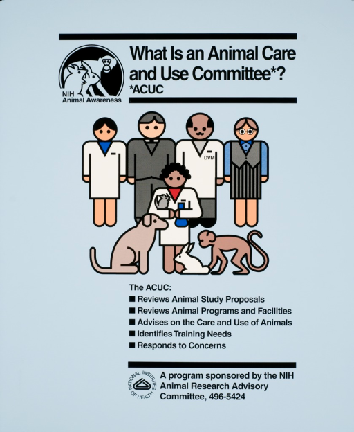 <p>People of different professions, one of whom is a veterinarian, are standing behind a dog, rabbit, and monkey.  A person is holding a mouse.</p>