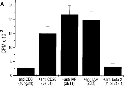 IL-2 production by 3.L2 clones transfected with hIAP form  2. (A) Anti-CD3 was coimmobilized at the indicated concentration with  anti-CD28, anti-hIAP (2E11, 2D3), or control mAb (YTS 213.1). 3.L2  clones, transfected with hIAP (form 2) were plated at 1 × 105 cells/well.  Supernatants were harvested after 24 h and IL-2 concentration measured as  described in Fig. 2 B. (B) 3.L2 clones transfected with hIAP (form 2) at 1 ×  105 cells/well were activated with the indicated amounts of Hb(64–76)  peptide presented by CH27 cells (2 × 104 cells/well) in the presence of  anti-IAP mAbs 2D3 or B6H12, anti CD28 (37.51) or a control mAb  (IB4). T cell hybridoma activation was measured by IL-2 production after  24 h of culture as described in Fig. 2 B. Neither anti-IAP or control Ab  alone caused detectable IL-2 production. The values shown represent averages of triplicates of 1 experiment of >3 with similar results.