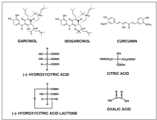Structure of Garcinol, Curcumin and compounds extracted from Garcinia indica.