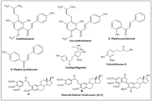 Structures of some therapeutically active chalcone compounds.