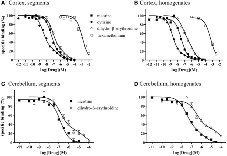 Competition curves for various dugs at [3H]-epibatidine binding sites in intact segments and homogenates of rat cerebral cortex (A,B) and rat cerebellum (C,D). Intact segments (A,C) were incubated with 400 pM [3H]-epibatidine for 28 h at 4°C. Homogenates were incubated with 200 pM [(B): cortex] or 300 pM [(D): cerebellum] [3H]-epibatidine for 5 h at 4°C. Each point represents the mean of duplicate determinations. Each figure represents four to five experiments.