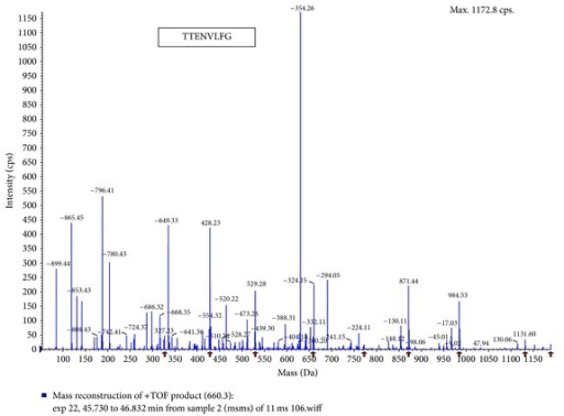 Amino acid sequence of the purified oligopeptide (P-1) from H. marmoreus by LC-MS/MS. MS/MS experiments were performed on a LCQ-Deca ESI ion trap mass spectrometer (Thermo Finnigan Co., USA). For protein identification, the MS/MS spectra were searched using SEQUEST (ver 3.3) software. (P-1, TTENVLFG).