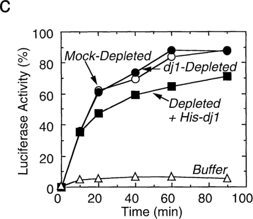 Effect of depletion  and readdition of chaperones  on refolding of chemically denatured luciferase. (a) Chemically denatured luciferase was  renatured in the untreated rabbit reticulocyte lysate (Untreated) or in the hsc70-depleted  lysate without readdition (Depleted) or with readdition (Depleted + Hsc70) of 1.8 μM  mouse hsc70. For comparison,  luciferase was renatured in the  absence of the lysate (Buffer).  (b) Denatured luciferase was  renatured in the mock-depleted  lysate (Mock-Depleted) or in  the dj2-depleted lysate without  readdition (Depleted) or with  readdition (Depleted + His-dj2)  of 0.2 μM His-dj2. Luciferase  was also renatured in the absence of the lysate (Buffer). (c)  Denatured luciferase was renatured in the mock-depleted lysate (Mock-Depleted) or in the dj1-depleted lysate without readdition (Depleted) or with readdition (Depleted + His-dj1) of 0.4 μM His-dj1. Luciferase was also renatured in the absence of the lysate (Buffer). (d) Refolding of luciferase was  conducted for 60 min at 25°C in the dj2-depleted lysate supplemented with decreasing amounts of His-dj2 (0.4, 0.2, 0.1, and 0.03 μM) or  E. coli DnaJ (0.4, 0.2, 0.1, and 0.03 μM). (e) Refolding of luciferase was conducted for 90 min in the hsc70-depleted lysate supplemented  with mouse hsc70 (1.8 μM), His-dj2 (0.4 μM), His-dj1 (0.5 μM), or DnaJ (0.5 μM).