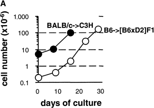 Phenotypic characterization and in vitro properties of ex vivo–expanded CD4+CD25+ T cells. (A) 0.2 × 106 B6 (○) or 5.5 × 106 BALB/c (•) purified CD4+CD25+CD62Lhigh T cells were stimulated with IL-2 and irradiated splenocytes from (B6 × D2)F1 or C3H mice, respectively. The graph depicts the expansion of living cells. (B) Flow cytometry analyses for the expression of CD4, CD25, and CD62L (inset) on total cells and CD4+CD25+CD62Lhigh T cells after cell sorting (fresh) and after 2 wk of stimulation with allogeneic irradiated splenocytes and IL-2 (cultured). (C) CD4+CD25+CD62Lhigh T cells from BALB/c mice were stimulated with C3H APCs (left) or B6 APCs (right). After 2 wk of culture, T cells were restimulated with either the same allogeneic APCs (•) or third-party allogeneic APCs (○; B6 on the left and C3H on the right). Proliferation was assessed after 2, 2.5, or 3 d of stimulation. In both assays, T cell proliferation to third-party allogeneic APCs in the presence of IL-2, and the one obtained in the culture without APCs in the presence of IL-2, was comparable and below 10,000 cpm. (D) A constant number of BALB/c CD25-depleted cells (effector T cells) was stimulated by C3H APCs. Cells were cocultured with different numbers of BALB/c-expanded CD4+CD25+ T cells to assess their suppressive activity at different ratios between regulatory T cells and effector cells. Inhibition of the proliferation of effector T cells as compared with the culture without regulatory T cells (10,125 cpm) is shown.