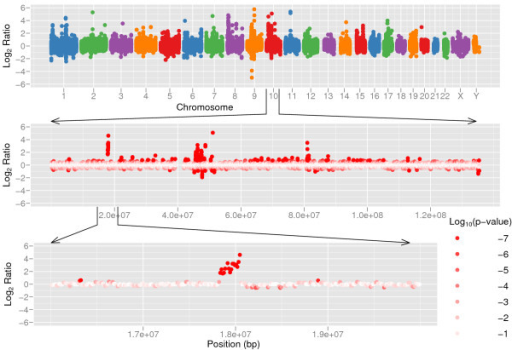 Copy number variation between two human individuals. Copy number variation detected by CNV-seq using shotgun sequence data from two individuals, Venter and Watson. The top panel shows a genome level log2 ratio plot. The middle panel shows the plot for chromosome 10. The bottom panel shows detailed view of a CNV region in chromosome 10. The red color gradient in the middle and bottom sections represents log10 p calculated on each of ratios.