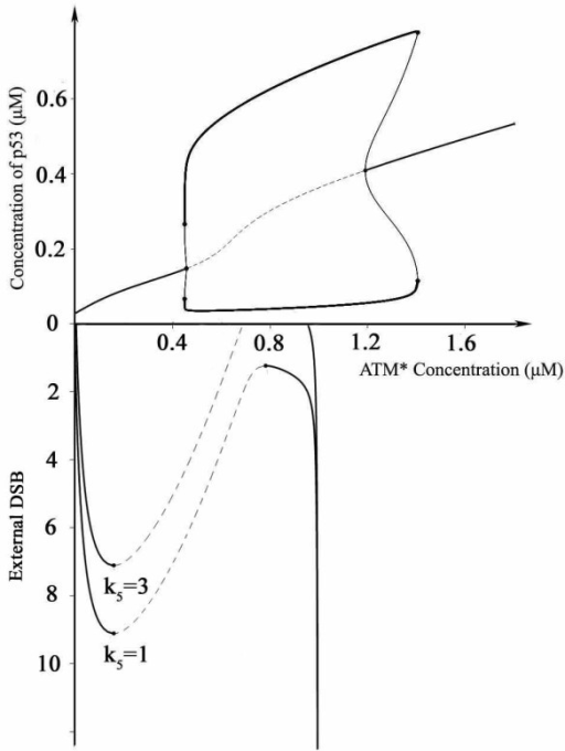 Schematic illustration of the mechanism of digital and sustained oscillation. The upper curve is a bifurcation diagram, p53 versus concentration of activated ATM. The lower curve is the dependence of activated ATM on the damage levels. The parameter k5 donates basal unrepaired DNA damage ([ATM*]: activated ATM. The limit point for the mutant switch is 7.11, for non-mutant switch 9.10).