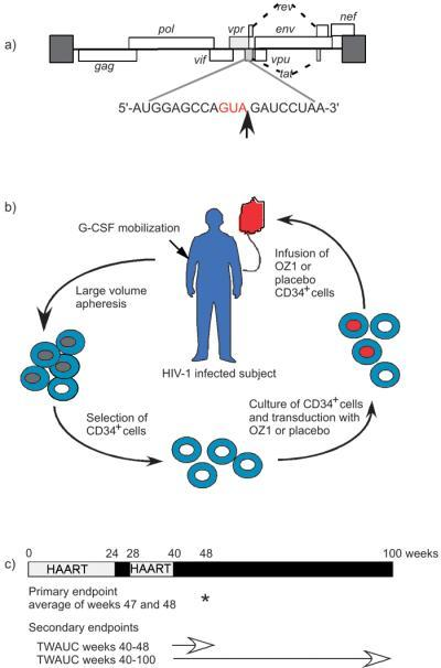 Ribozyme Target Site Within Hiv-1 Genome, Schema Of Gen  Open-I-2023