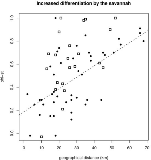 Relationship between geographical distance and ΦST-values. Black circles: pairs of park populations (n = 45), open squares: pairs of populations that are separated by stretches of savannah (n = 21), dashed line: regression line for pairs of ANP populations.