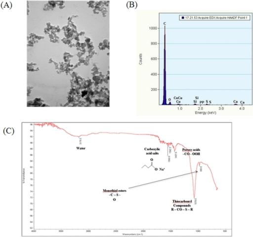 Physicochemical properties of DEPs suspended in PBS.(A) TEM image, (B) Energy-dispersive X-ray spectroscopy, and (C) FT-IR image.