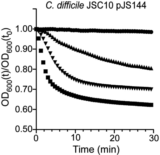 Mutations in C.difficile cspC can alter germination specificity.Purified C. difficile JSC10 (cspC::ermB) pJS144 (pcspBACG457R) spores were suspended in BHIS medium (•) or BHIS medium supplemented with 1 mM chenodeoxycholic acid (▴) or 5 mM chenodeoxycholic acid (▾) or 10 mM TA (▪) and the initiation of germination was followed at A600.