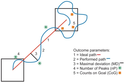 Schematic overview of the outcome parameters.