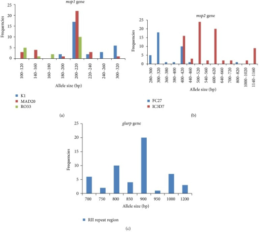 Genetic diversity of P. falciparum by msp1, msp2, and glurp genes. PCR amplification was represented by groups where PCR product size differed by 20 bp. (a) Genetic diversity by msp1 gene. Blue bars denote the K1 allelic family, size ranging from 180 to 300 bp; red bars denote the MAD20 allelic family, size ranging from 100 to 220 bp; and green bars denote the RO33 allelic family, size ranging from 100 to 200 bp. (b) Genetic diversity by msp2 gene. Blue bars denote the FC27 allelic family, size ranging from 280 to 800 bp and the red bars denote the IC3D7 allelic family, size ranging from 400 to 1150 bp. (c) Genetic diversity by glurp gene. Blue bars denote the RII repeat region of glurp gene, size ranging from 700 to 1200 bp.