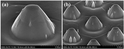 FESEM images of the conical island structure of the Ti surface fabricated by dry etching. At magnifications of (a) × 20,000 and (b) × 8,000.
