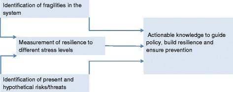 Suggested framework to analyze the fragility of public health systems given uncertainty about potential stressor with the goal of enabling more actionable and effective interventions
