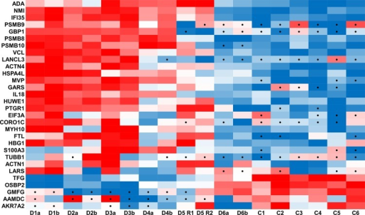Heatmap of significantly changed proteins.Protein intensity z-scores of significantly changed proteins listed in Table 2. Red denotes high relative protein intensity while blue indicates low intensity with black dots signifying zero values that were imputed for statistical analysis.