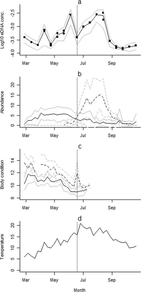 Seasonal variations in eDNA concentration, in relation to adult and larval population size, adult body condition and temperature.(a) Shows Log10 (x + 0.0001) of the mean eDNA concentration (ngμL−1), per pond (black line, solid circles collected using glass-microfiber filters, solid squares collected using precipitation in ethanol) with 95% confidence intervals (grey) across the eight ponds. (b) Shows the mean estimated population size per pond black (adults - solid line, larvae - broken line) with 95% confidence intervals (grey). (c) Shows mean body condition (males – solid line, females – dashed line) using the scaled mass index of adults caught each week throughout a survey season with 95% confidence intervals (grey). (d) Shows mean weekly temperatures in degrees Celsius through the study period. The vertical dotted line represents the end of the breeding season and the start of the post-breeding season, as related to the models described in Tables 1, 2.