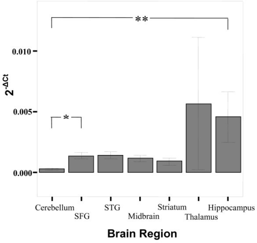 Bar graph describing the expression (2-ΔCt) of TPH2 in various brain regions. There are significant differences in expression (denoted by ** [p = 0.001] and * [p = 0.011]) across the brain regions, mainly due to lower expression of genes in the cerebellum (see Table 1). Bars represent the mean and error bars represent s.e.m. The groups representing expression in the thalamus have N = 2.