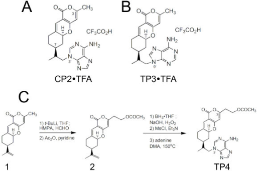 Chemical structures of TP compounds utilized in the study and synthesis of compound TP4. TFA – trifluoracetic acid; THF – tetrahydrofuran; HMPA – hexamethylphophoramide.