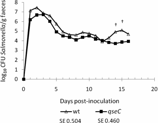 The putative adrenergic sensor kinase QseC does not significantly influence intestinal colonisation of pigs. 6-week-old pigs were inoculated with 1.50 × 109 CFU ST4/74 nalR (n = 5) or 1.53 × 109 CFU ST4/74 nalR ΔqseC (n = 6) and the course of faecal excretion of the bacteria followed daily for 16 days. Values shown are the least square means (LSM) ± standard error (SE) of the LSM. † denotes p values ≤ 0.1.