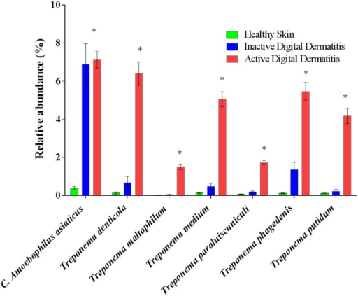 Relative abundance of the major bacterial species associated with digital dermatitis (DD) in healthy skin, inactive DD lesions and active DD lesions.Bacterial types were selected based on the top ranked robust LogWorth of the false discovery rate and average relative abundance of bacterial types in healthy skin, inactive DD lesions, and active DD lesions. Asterisks mean significance. *P < 0.05.