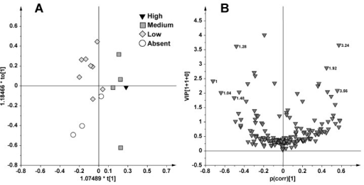OPLS (A) and p(corr)/VIP (B) score plot for samples fished in June using as responsible variable (Y) the liver caulerpin content (Absent = 0 μg/g d.w., Low < 10 μg/g d.w., Medium >10, <50 μg/g d.w. and High >50 μg/g d.w.).
