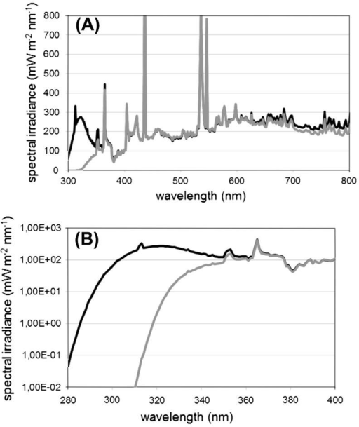 Sun simulator spectra for control (gray line) and treatment (black line) during the experiments; (A) spectra covering the range 300–800 nm; and (B) detail representing the relevant range from 280 to 400 nm.
