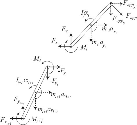 Mechanical model of two successive vertebrae, modelled as having negligible thickness and uniform mass distribution. The figure shows action and reaction forces, net moments of force, and all linear and angular accelerations. Gravitational forces are ignored as they are not applicable in the plane of motion