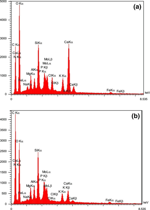 EDS spectrum of algae–Mo a before and b after phosphate adsorption